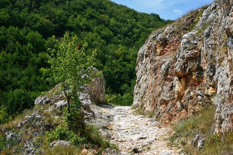 sube y baja la montaña 2
